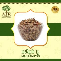மகிழம்பூ Magilam Poo