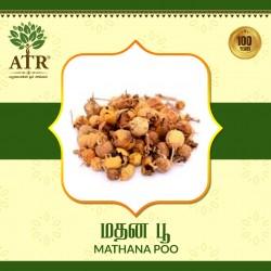 மதனகாமப்பூ  /  Madhanakama Poo.