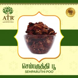 செம்பருத்தி பூ Semparuthi Poo