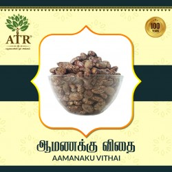 ஆமணக்கு விதை Aamanaku Vithai