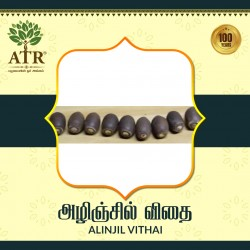 அழிஞ்சில் விதை ALINJIL VITHAI